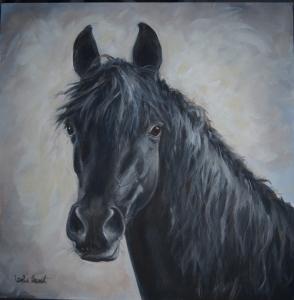 Gorgeous horse!!!