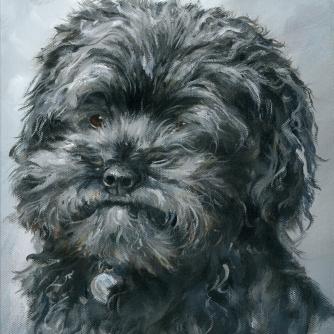 little dark fuzzy dog portrait