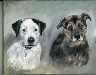 ginni 2 dogs676